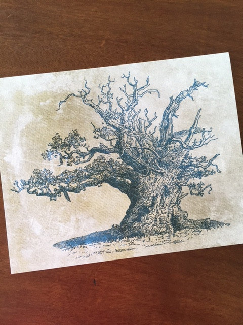 Art Prints - Farm Living Art Collection - Tree #5