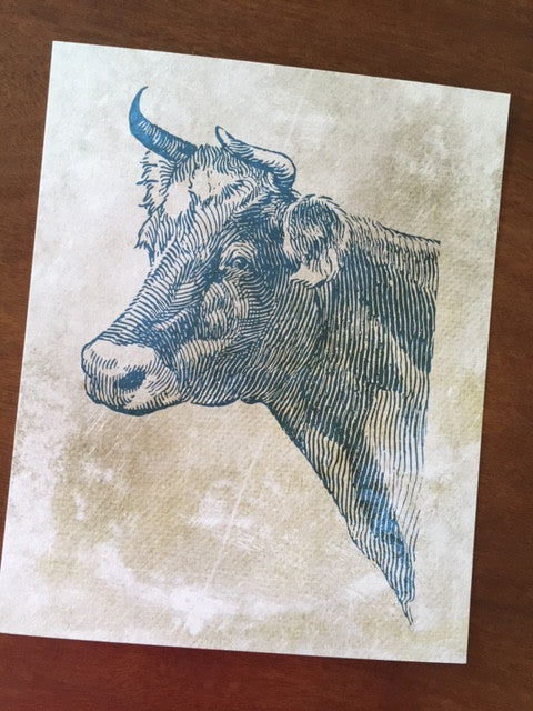 Art Prints - Farm Living Art Collection - Cow Up Close