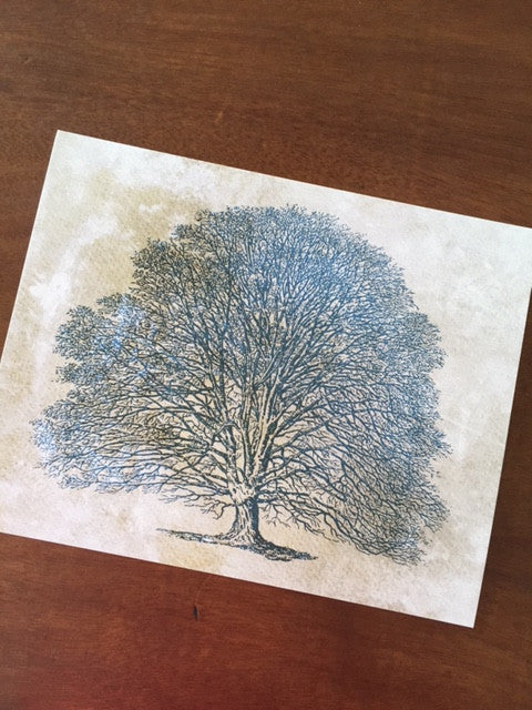 Art Prints - Farm Living Art Collection - Tree #4