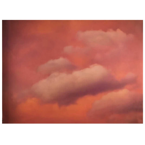 DIANE ALLISON Poster, Pink Clouds