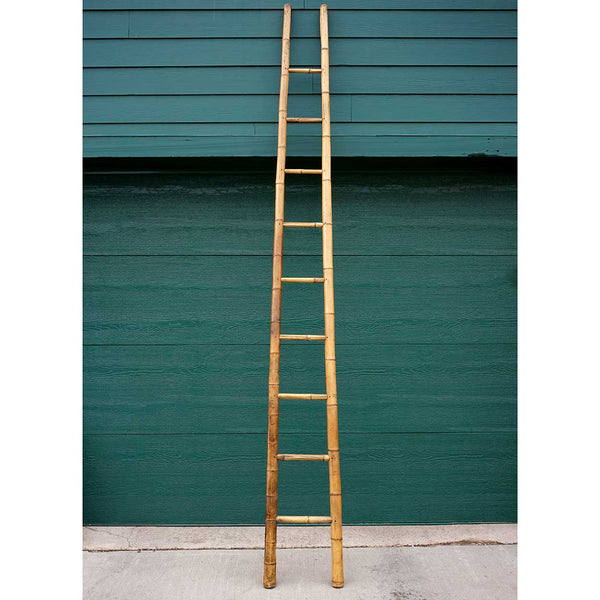 Tall Bamboo Orchard Ladder