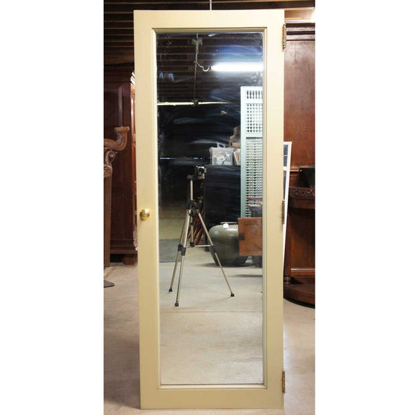 American Painted and Mirrored Pine/Poplar Single Door