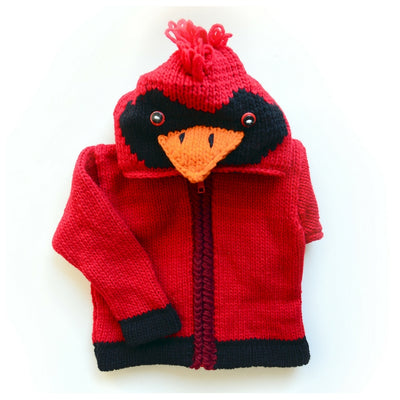 Kid's Cotton Wool Sweater with Cardinal Hood