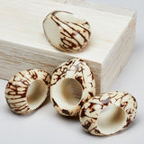 Tagua Napkin Rings (Set of 4) in a Gift Box