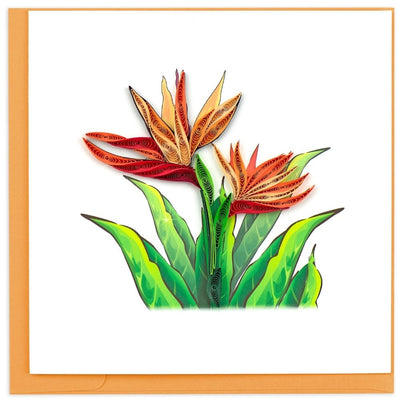 Quilled Bird of Paradise Greeting Card