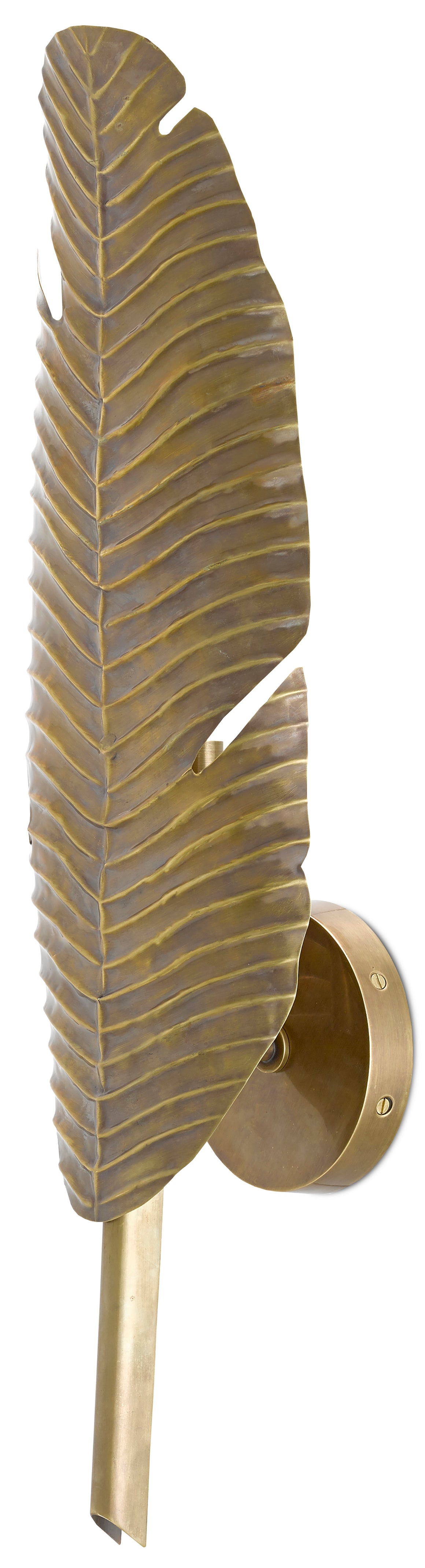 Currey and Company Tropical Leaf Wall Sconce
