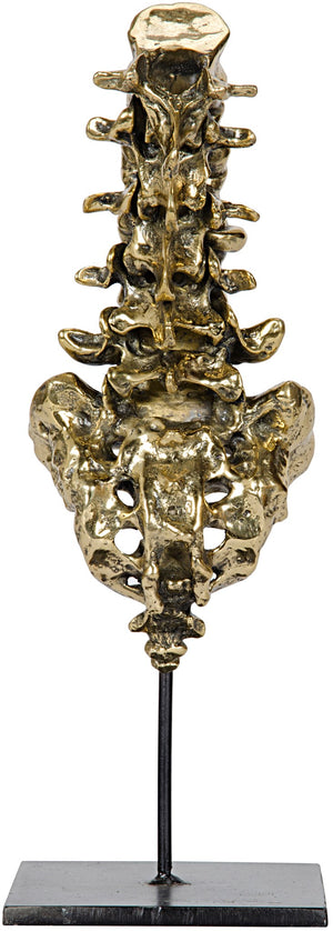 Noir Vertebrae - Brass and Metal