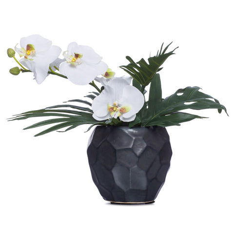 Small White Silk Phalaenopsis in Faceted Black Pot