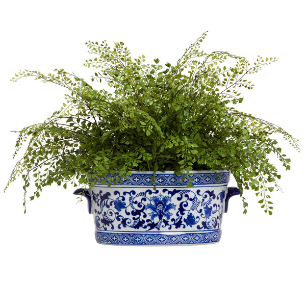 Silk Fern in Chinoiserie Pot