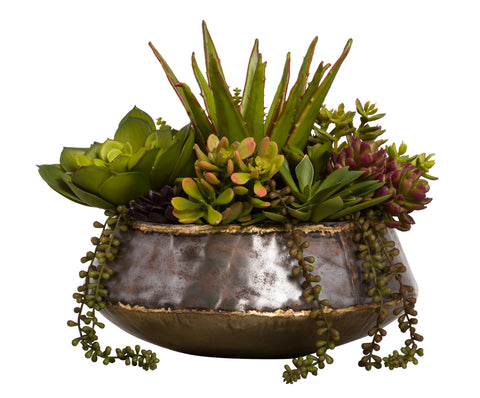Faux Succulents Arrangement in Small Bengal Bowl