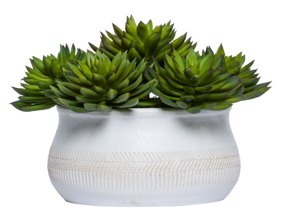 Faux Potted Succulents Plant