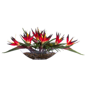 Faux Bird of Paradise in Large Glass Boat – Red