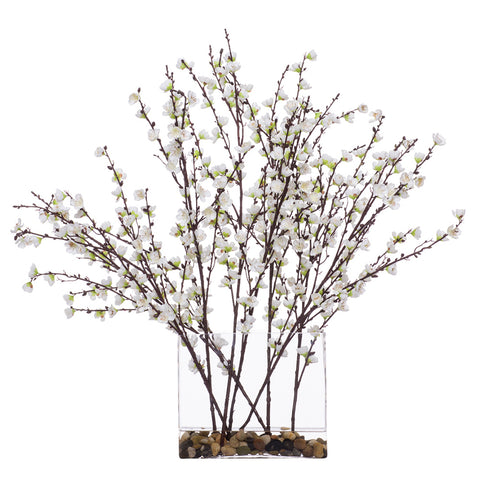 Large White Plum Blossom in Rectangle Glass Waterlike