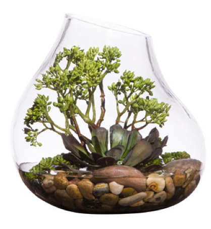 Faux Potted Succulents Terrarium