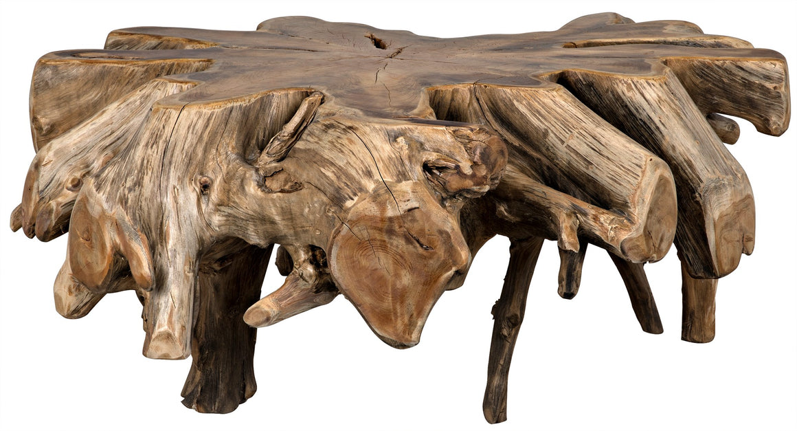Noir Teak Root Coffee Table
