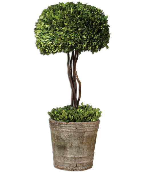 Faux Florals - Boxwood Topiary Tree In Mossy Pot