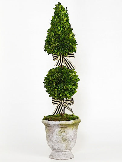 Faux Florals - Silk Boxwood Topiary Ball & Cone