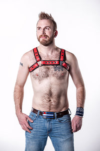 Double Fold Leather Bulldog Harness