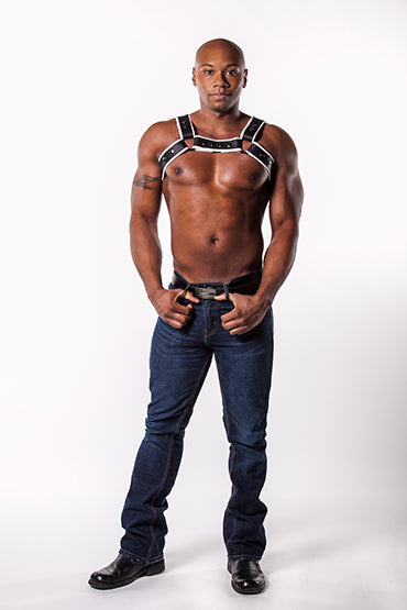 Single Fold Leather Bulldog Harness