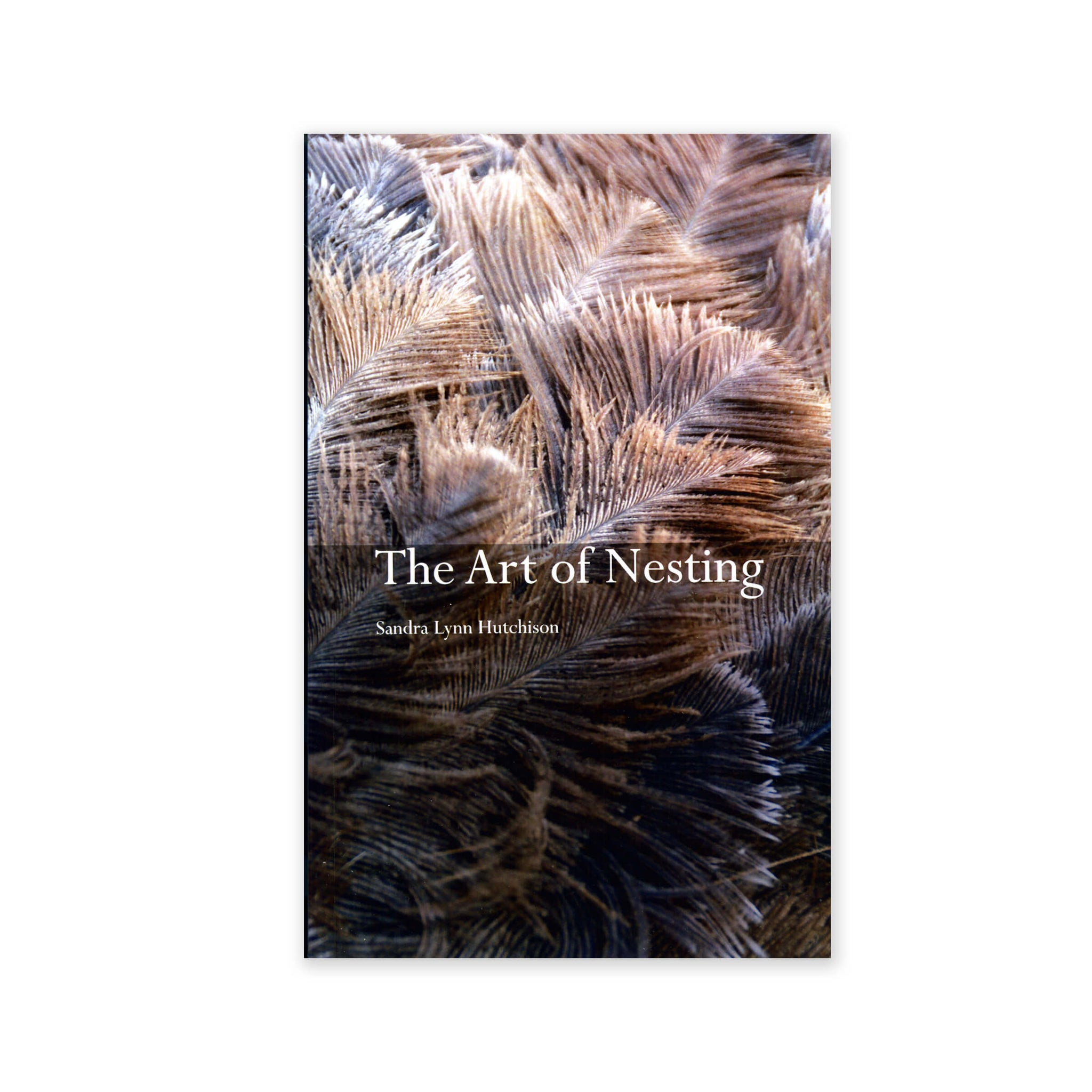 Art of Nesting - A Collection of Poetry