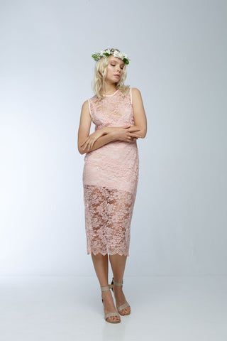 Check Point Dress Blush Lace