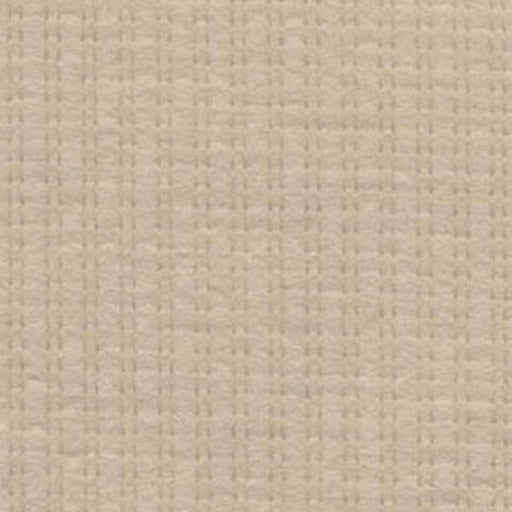 Contrast Beige Sample