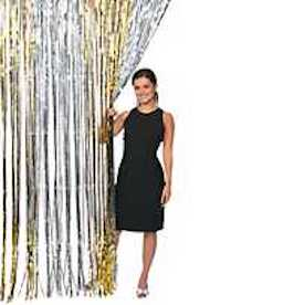 Gold & Silver Tinsel Party Decorative Curtain (fits most doorways)