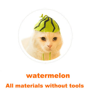Watermelon Cat headgear