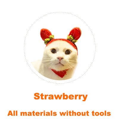 Strawberry Cat headgear