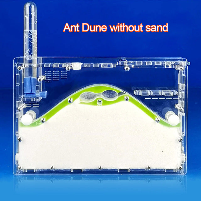 2019 DIY Transparent Acryl Ant Farm, Natural Ecological Ants Nest, Insect Ant House