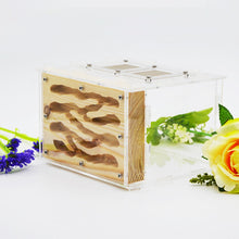 Load image into Gallery viewer, 2019 New DIY Wooden Ant Farm Ecological Acrylic Ant Nest with Feeding Area Wood Ant House