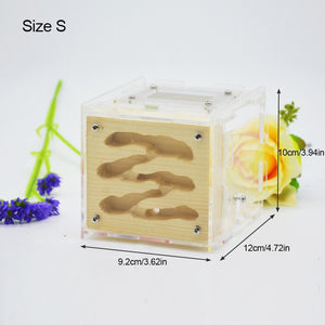 2019 New DIY Wooden Ant Farm Ecological Acrylic Ant Nest with Feeding Area Wood Ant House