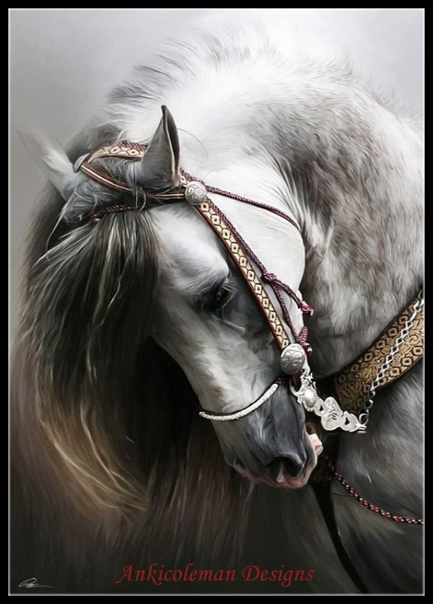 Decor - Andalusian Horse