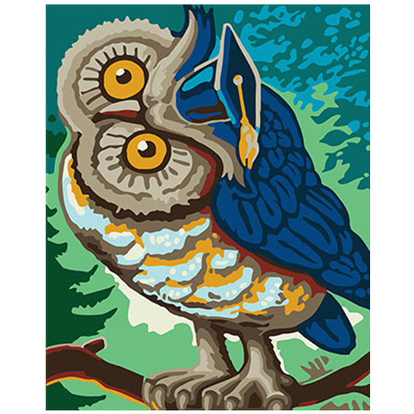 Colorful Owl Framed Pictures DIY Painting By Numbers DIY Oil Painting On Canvas