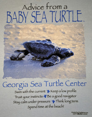 Advice from a Baby Sea Turtle Adult Shirt
