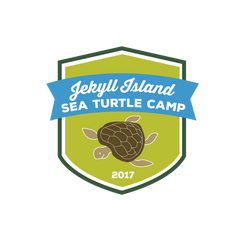 Sea Turtle Camp (Non-Member registration for one child)
