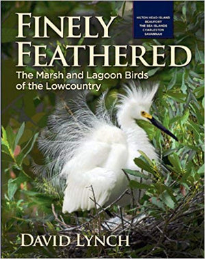 Finely Feathered: The Marsh and Lagoon birds of the Lowcountry