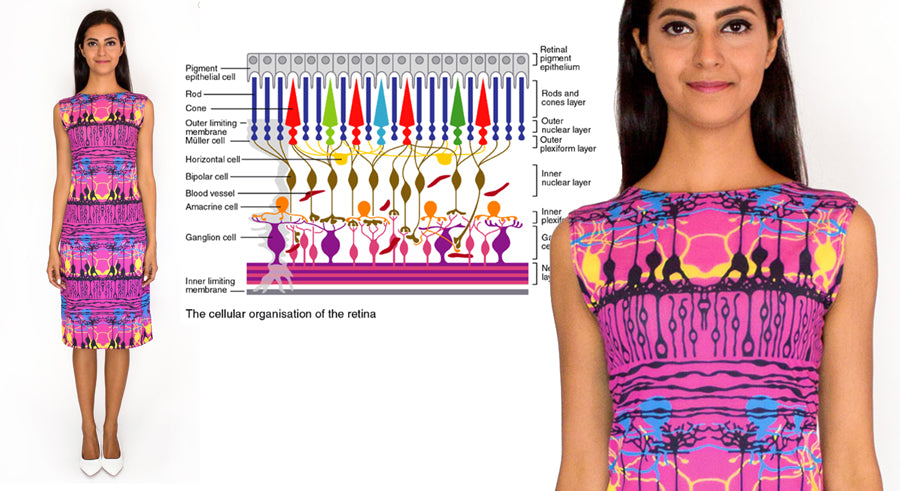 neuroscience fashion retinal neuron dress