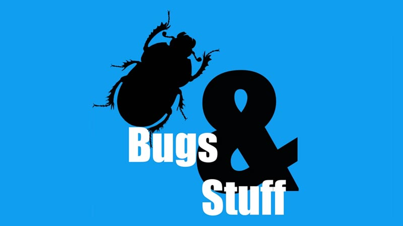 Bugs and Stuff Science Podcast