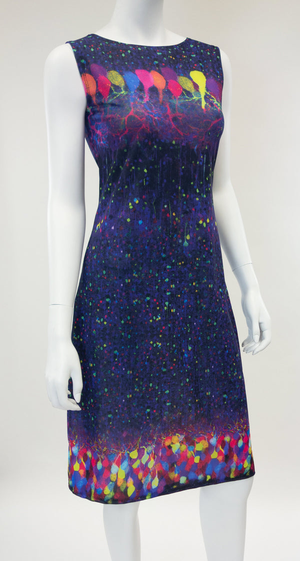 Brainbow Neuron Science Dress Front