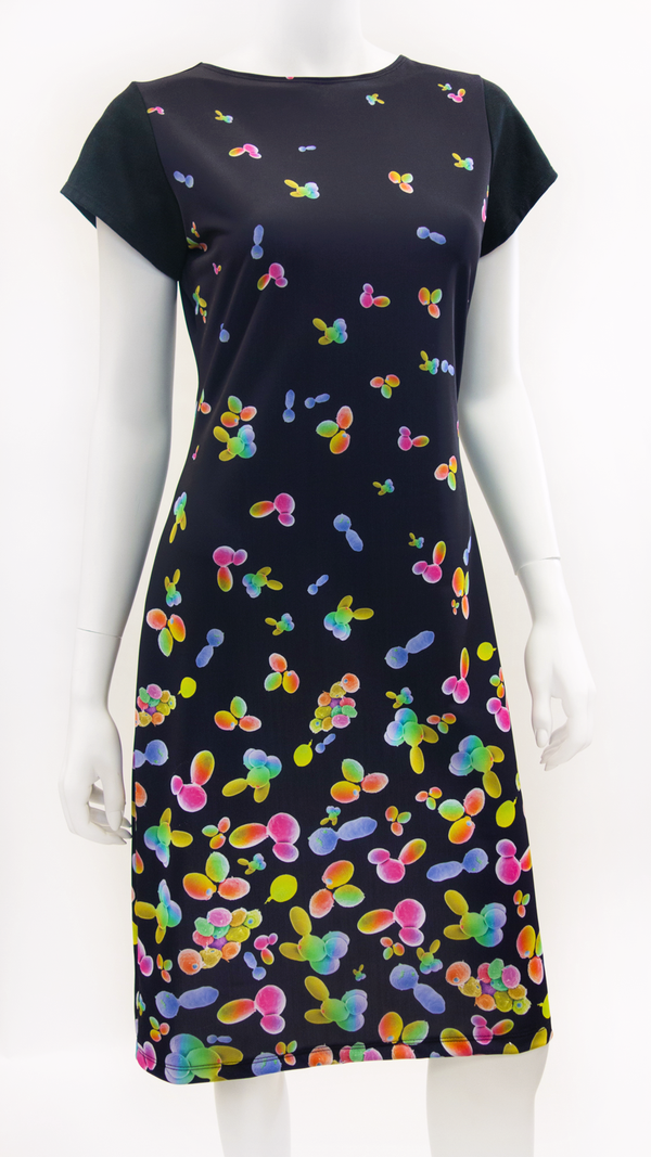 science dress microbiology yeast SEM scanning electron micrograph STEM