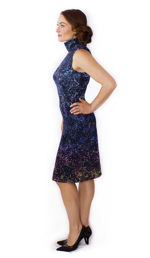 Dark Matter BOSS Astrophysics Dress Side