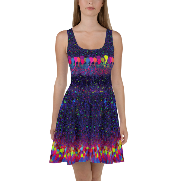 Brainbow Neuroscience Skater Dress