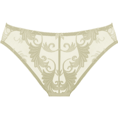 Brief in Ivory