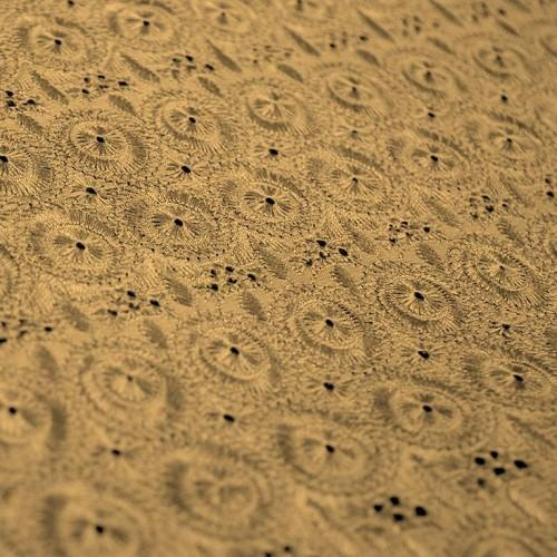 Simple Eyelet Pattern Silk Shantung Embroidery