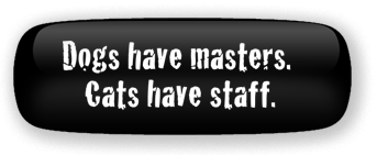 Dogs have masters, cats have staff