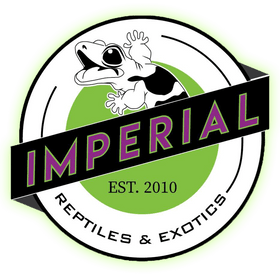 Imperial reptiles and exotics online reptile store, buy exotic pets for sale online at cheap prices