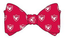 Vineyard Vines Bow-tie