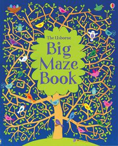 Big Maze Book Ages 6+