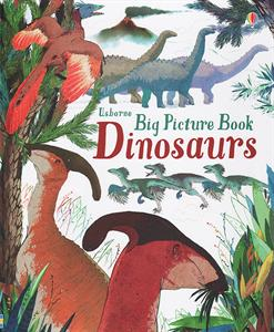 Big Picture Book Dinosaurs Ages